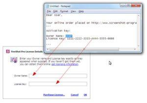 FireShot Pro License Key Download Free
