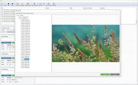 Arclab Watermark Studio Crack With License Key Download