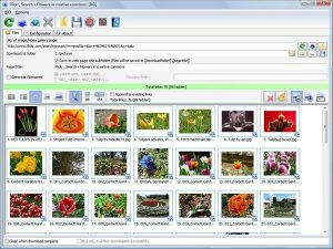 bulk image downloader registration code With Crack Download